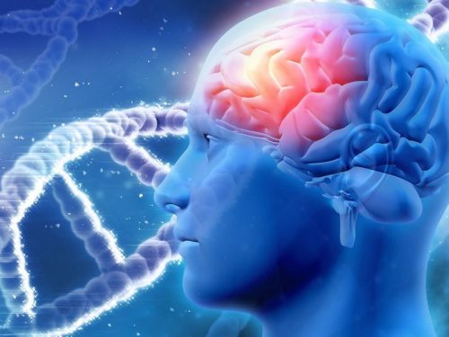 Alzheimer's Disease: Crook from the Mind